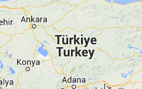 google-yerel-aramalar