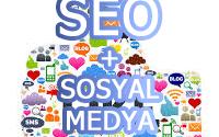 seo-sosyal-medya