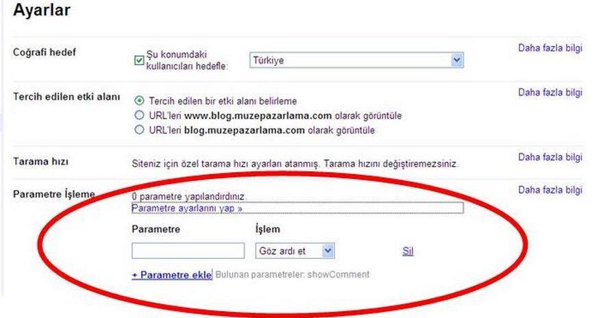 site-yoneticisi-parametre-ozelligi